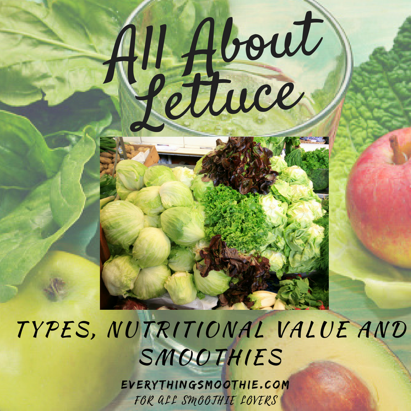 Lettuce Types Nutrition Smoothies Everything Smoothie