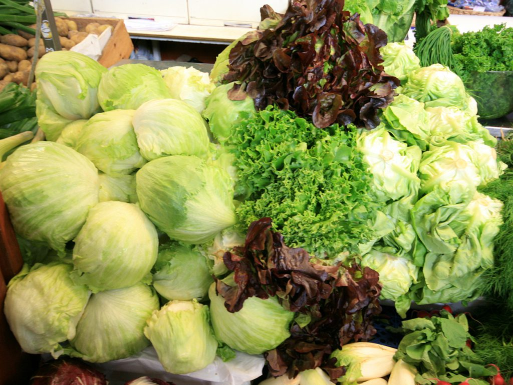 All About Lettuce : Types, Nutritional Value And Smoothies